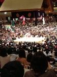 2013.6_sumo01.JPG